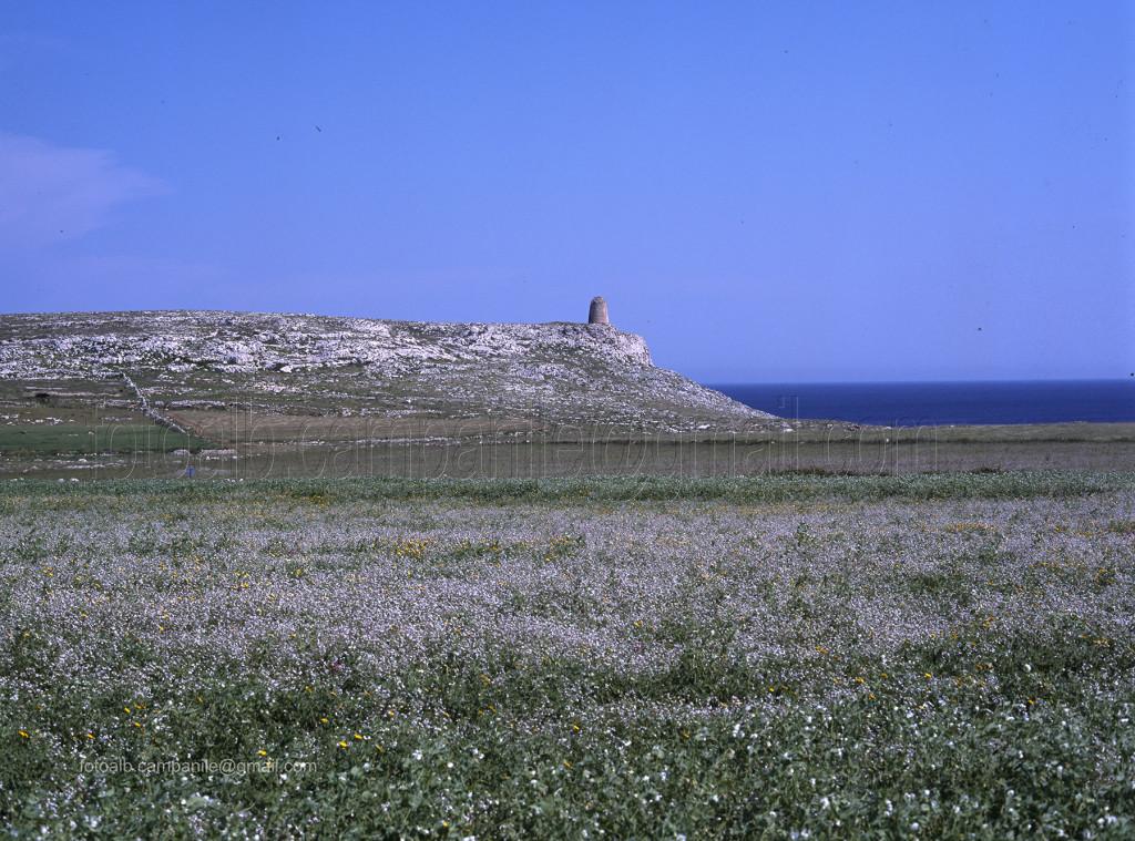 Puglia SAL 087