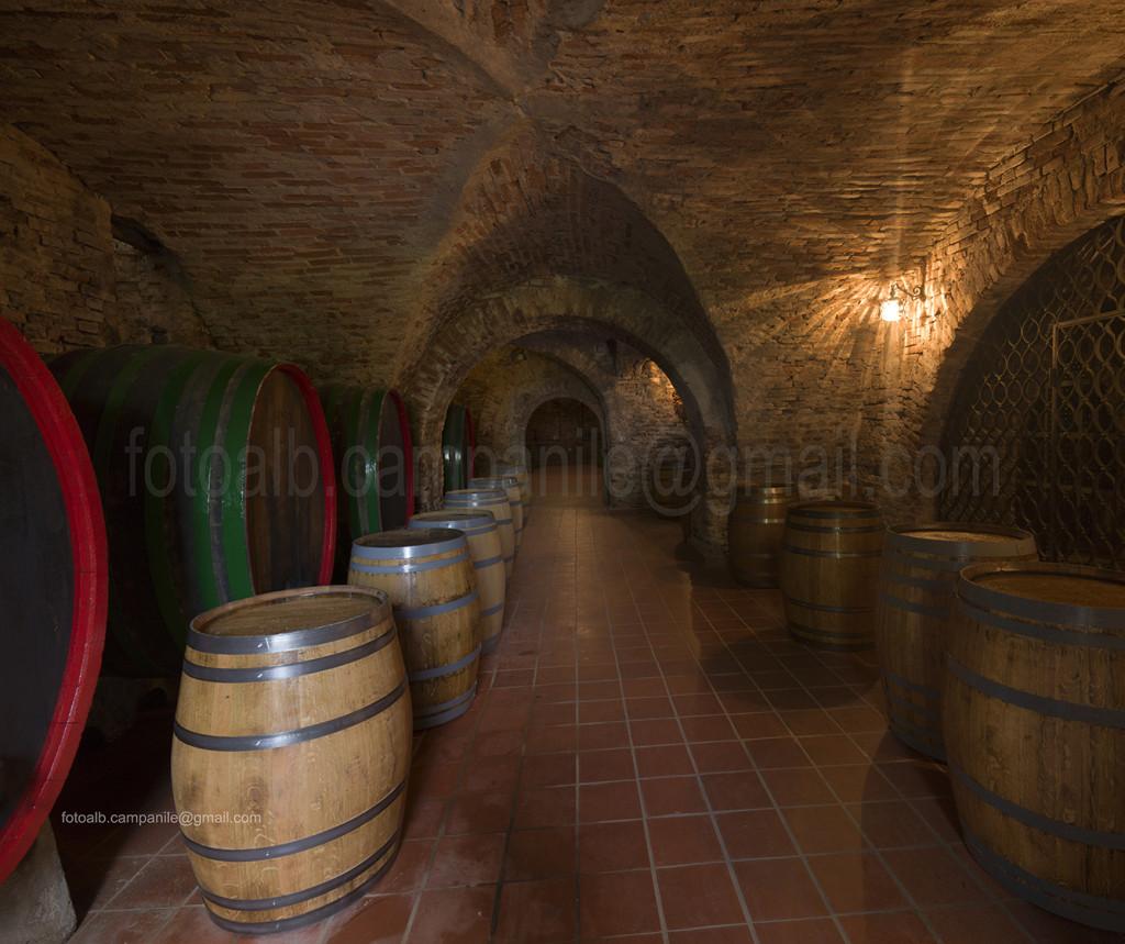 Ormoz Wine cellar, Ormoz, Pomurje, Slovenia, Europe