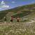 Alberto Campanile Hasselblad H3D The path for Pfnatschalm, San Martino (Reinswald), Sarentino Valley, Trentino Alto Adige, Italy, Europe 2016-08-13 16:54:42 Alberto Campanile f/9.5 1/400sec ISO-100 65mm