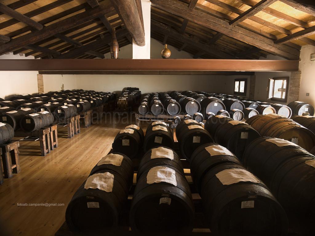 sorbara-078-agrit-garuti-acetaia-aceto-balsamico-tradizionale-di-mo