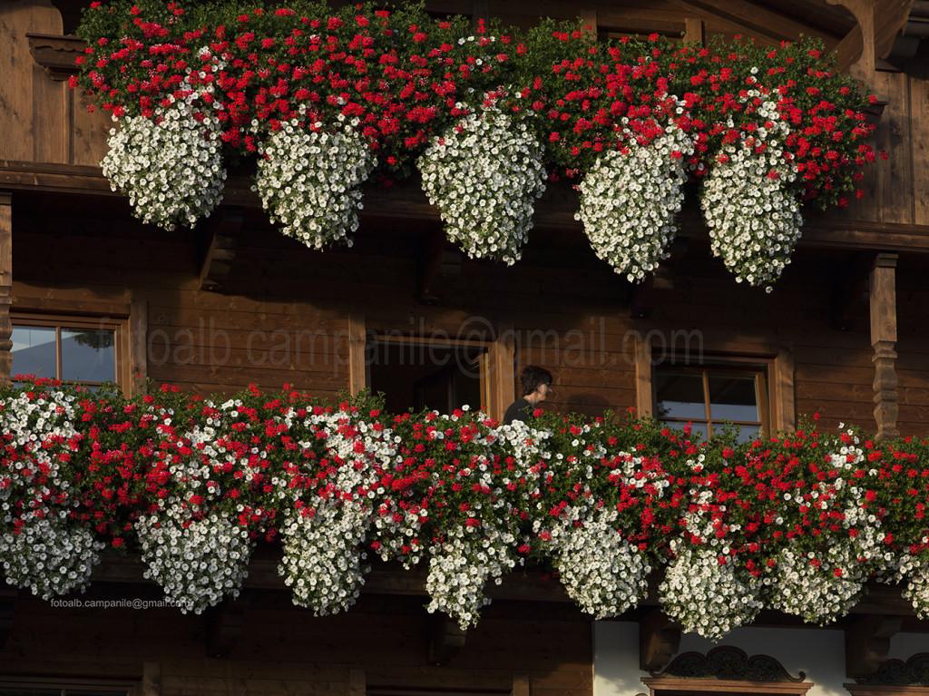 Traditional house, Alpbach, Alpbach Valley,  Austria, Tyrol, Europe