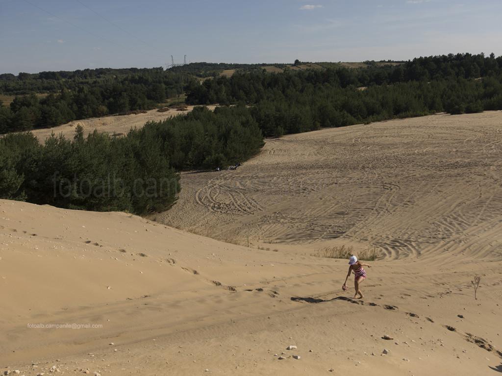 Pustynia Siedlecka (Siedlecka desert), Siedlec Janowski, Poland, Europe