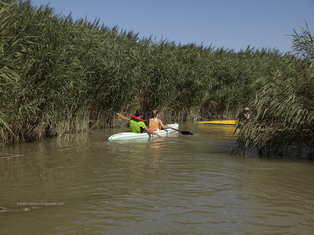 Po river, Pila, Porto Tolle, Polesine, Veneto, Italy, Europe Alberto Campanile Hasselblad H3D  2014-08-17 10:38:03 Alberto Campanile f/8 1/640sec ISO-100 90mm