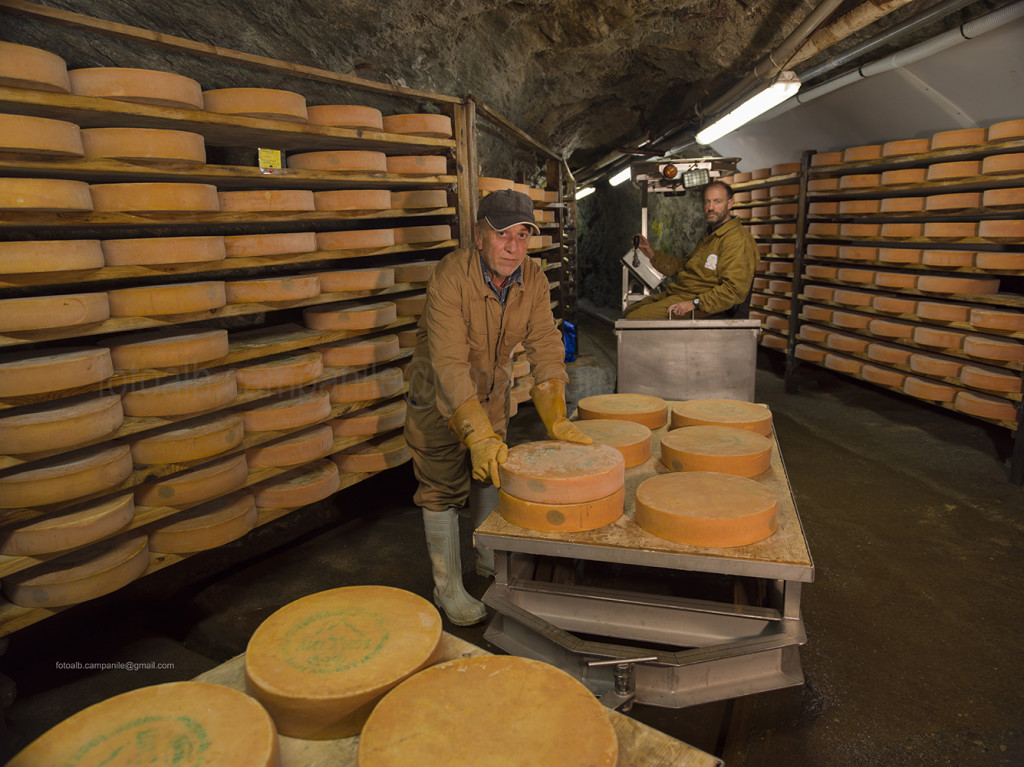 Fontina Museum and seasoning room, Valpelline, Aosta Valley, Italy, Europe
