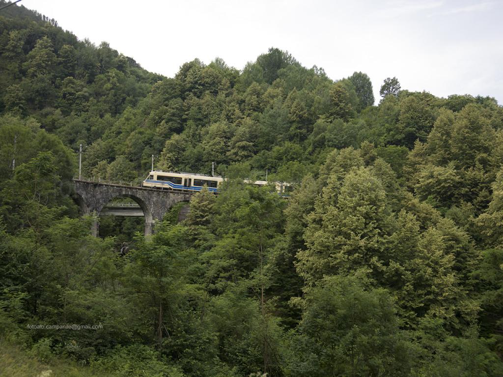 Treno Domodossola