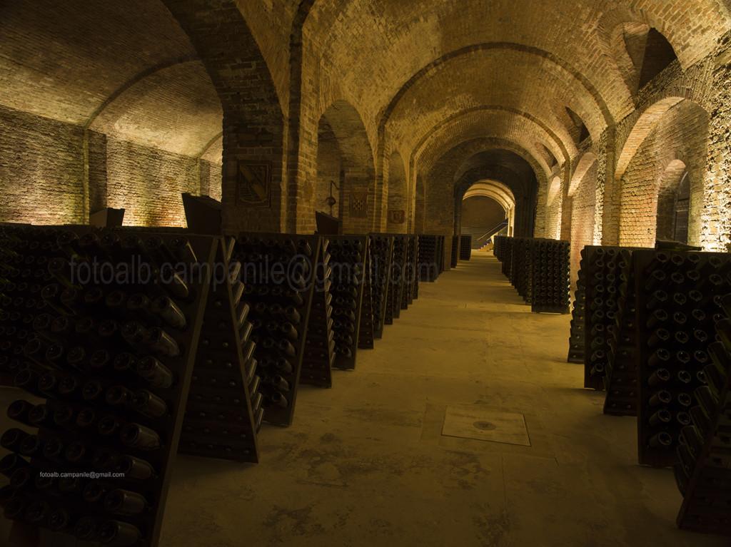 Bosca Wine cellar, Canelli, Piemonte, Italy, Europe