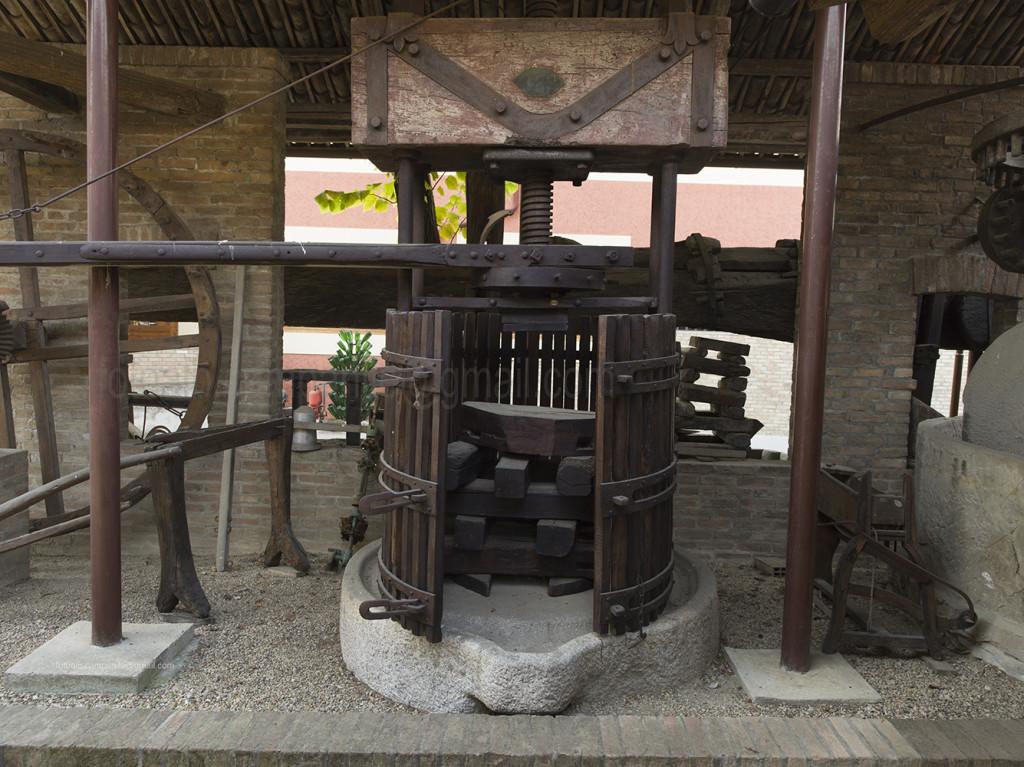 Bersano Wine cellar, Nizza Monferrato, Piemonte, Italy, Europe