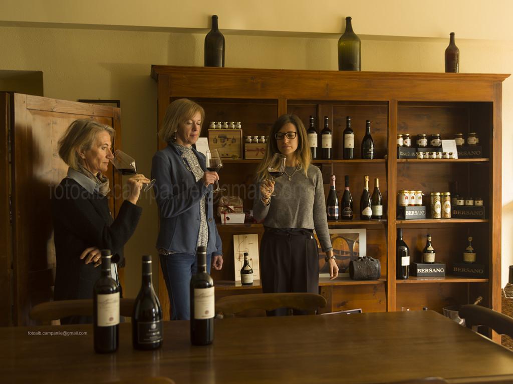 Barbera wine, Bersano Wine cellar, Nizza Monferrato, Piemonte, Italy, Europe