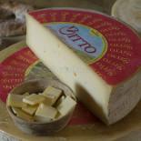 Bitto cheese, Bormio Dairy, Bormio, Valtellina, Lombardy, Italy, Europe