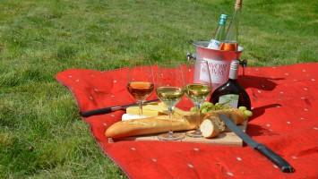 picnic-977866_1920