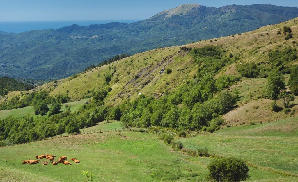 Alta Val taro Visit Emilia