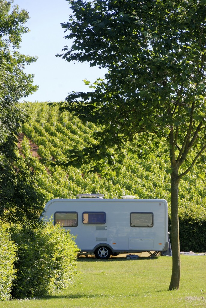 Donne del Vino Camper Friendly