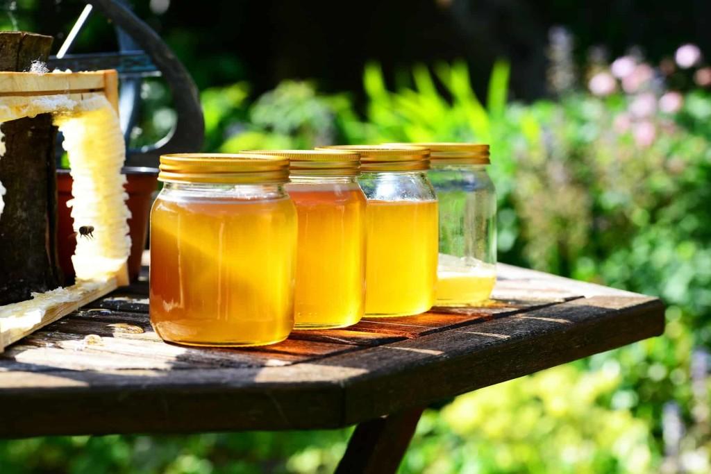 honey-352205_1920 (1)