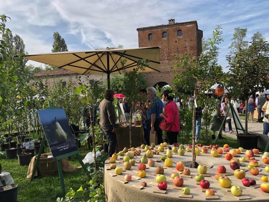 I Frutti del Castello, credit Carla Soffritti (37)
